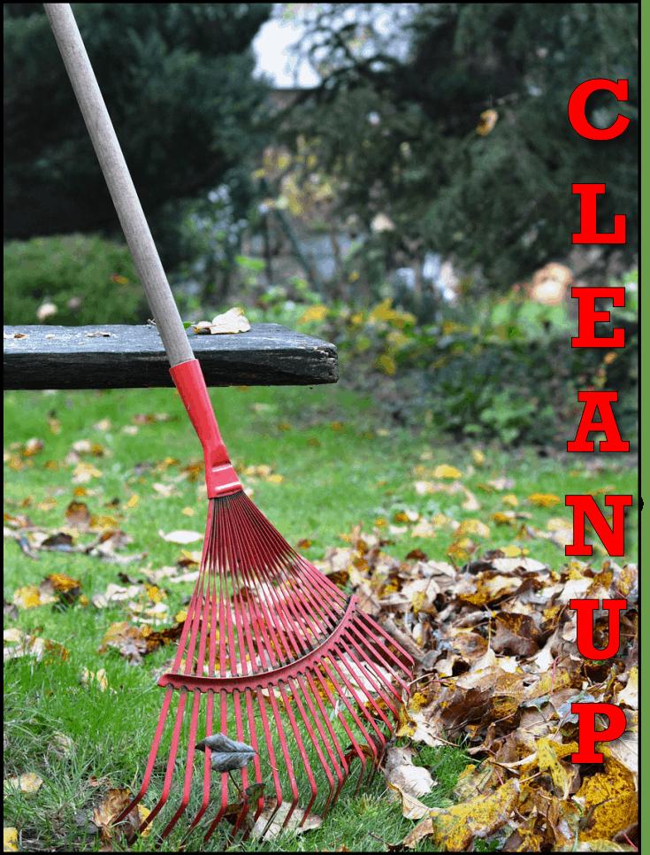 YARD CLEANUPS