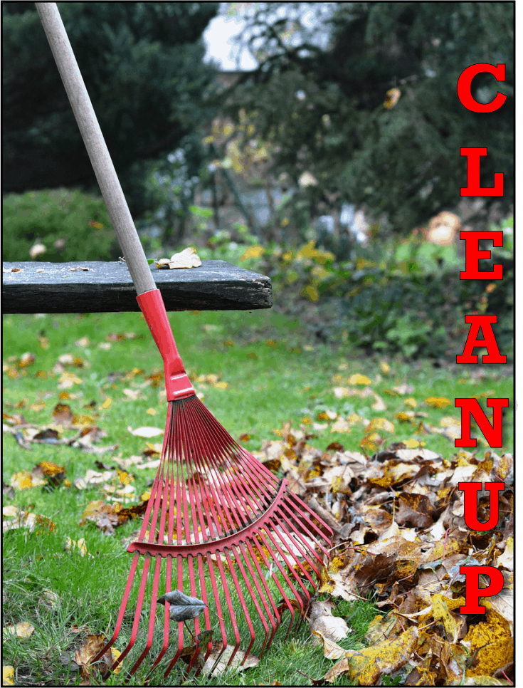 YARD CLEANUPS